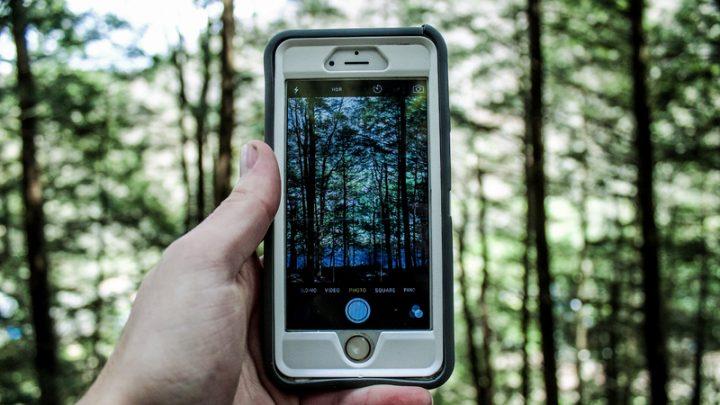 smartphone forêt recyclage déchets électroniques